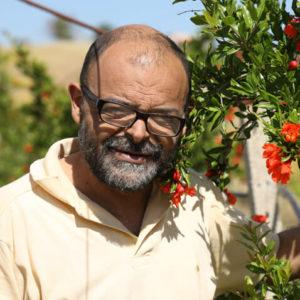 Pietro Mulè